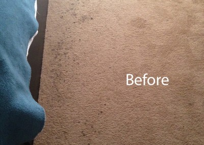 ink stain removal Cypress -A