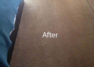 ink stain removal Cypress -B